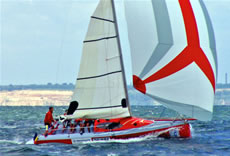 racing yacht catran 800 for sale